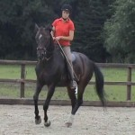 Pirouette 1 150x150 Developing the canter pirouette