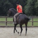 Pirouette 2 150x150 Developing the canter pirouette