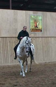 Pirouette walk 1 194x300 Developing the canter pirouette