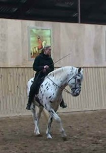 Pirouette walk 2 209x300 Developing the canter pirouette