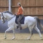canter 150x150 About me