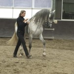 werk aan de hand 150x150 Work in hand exercises