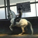 Levade 150x150 What is academic art of riding?