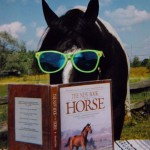 Funny Horse Photo JanSharp TieSunglassesSmaller 150x150  Winners of the Funny Horse Photo Contest