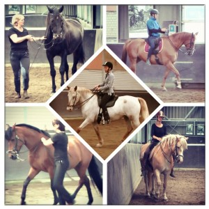 3eGraadInstructeurs2012 300x300 12 Tips For Being The Best Rider You Can Be