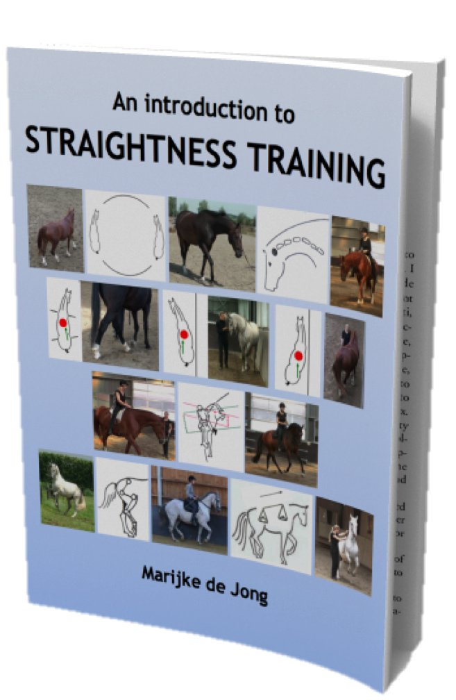 eBook straightness training Free eBook about Straightness Training