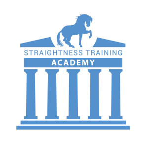 ST Academy 300x291 What is the difference between the Academic Art Of Riding and...